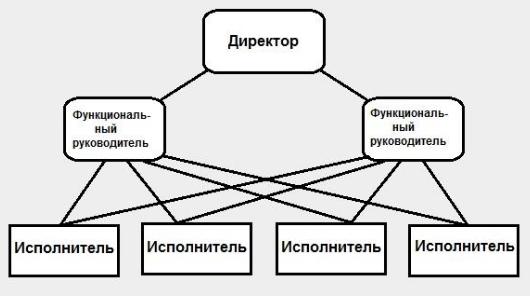 Функциональный тип организационной структуры
