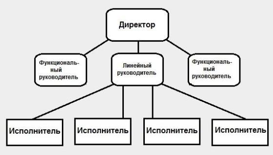 Линейно функциональный тип организационной структуры