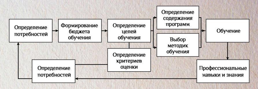 Управление развитием персонала
