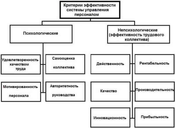 Оценка эффективности управления персоналом