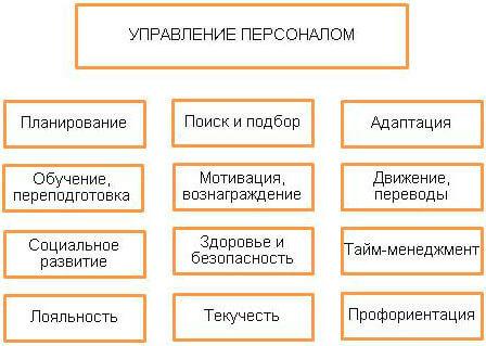 Программа управления персоналом