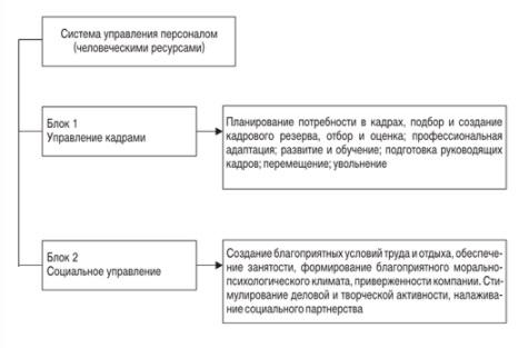 Распределение обязанностей руководителей